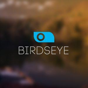 Birdseye – Minimal geometric logo design free logo preview