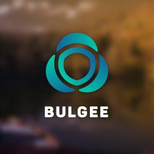 Bulgee – Abstract vector logo design free logo preview