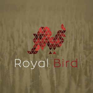 Royal Bird – Triangle pattern rooster logo vector free logo preview