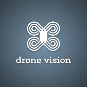Drone Vision – Free abstract logo vector design free logo preview