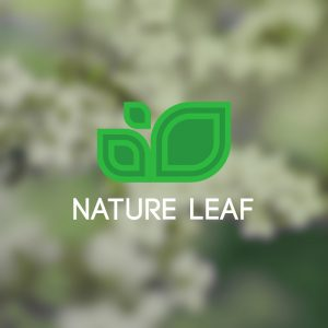 Nature Leaf – Free geometric plant logo vector free logo preview