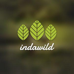 Indawild – Free minimal tree leaf logo vector free logo preview
