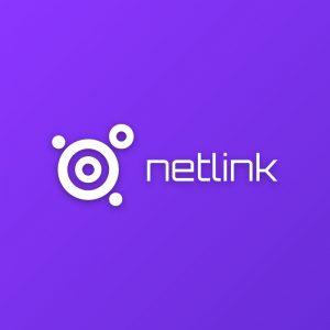 Netlink – Free tech software logo download free logo preview