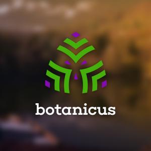 Botanicus – Free abstract plant flower logo free logo preview