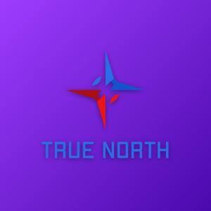 True North – Compass travel vector logo design free logo preview