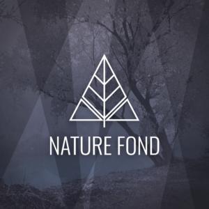 Nature fond – Free tree outline geometric logo free logo preview
